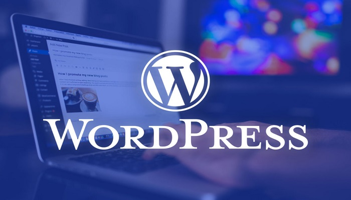 52% of Businesses now using WordPress for the website